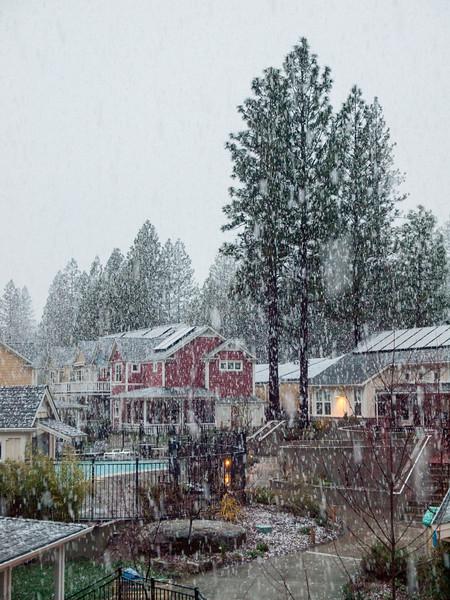 Huge snowflakes falling at NC Coho, April 13, 2012