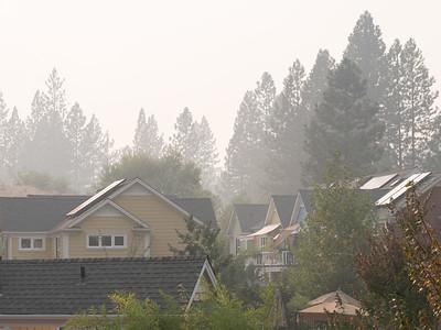 Smokey NC Coho, September 21, 2014