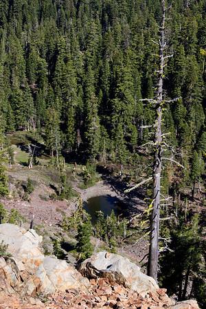 Grouse Ridge Ca 014