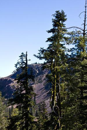 Grouse Ridge Ca 028