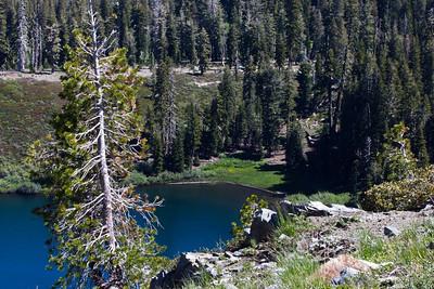Grouse Ridge Ca 063
