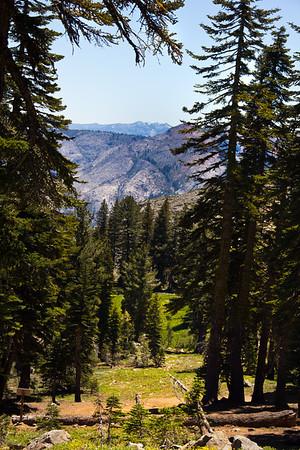 Grouse Ridge Ca 136