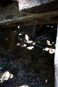 Independance Trail West 087