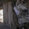 Green Springs, White Pine Range, NV
