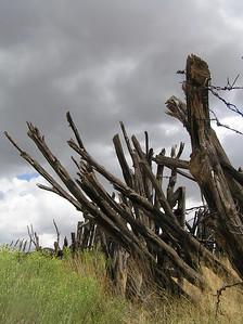 homestead, New Mexico, San Andres Mts