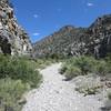 Eventually, the canyon narrows.