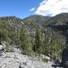 First view of Hayford Peak.