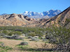 Leaving Gold Butte--snow on north side of the Virgin Mountains