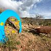 _5794 12x8 Disc Golf Reno Adventure Park - May ©2016MelissaFaithKnight&FaithPhotographyNV