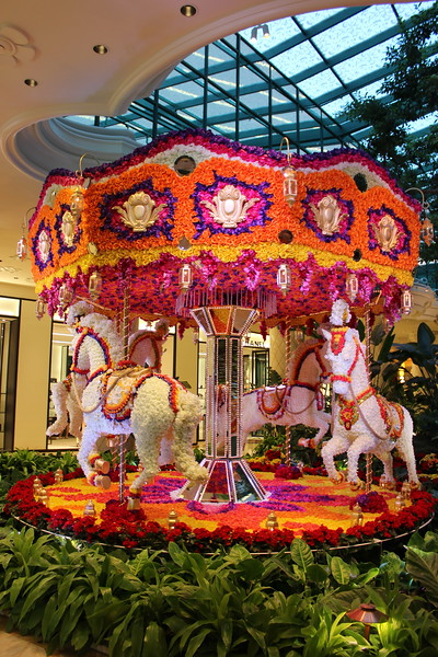Carousel in the Indoor Garden