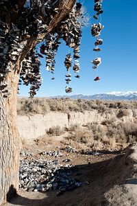 Shoe Tree @ Middlegate, Nevada, cut down by some word-class idiot the night from December 30 to 31, 2010.