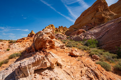 Rocks of Color in thw White Dome Area of Valley of Fire State Park