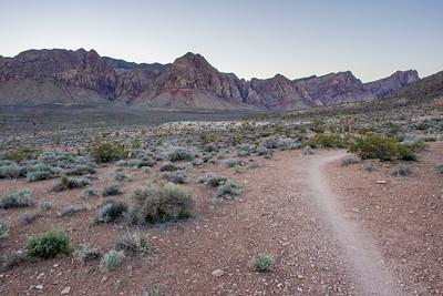 Mountain biking the Landmine Loop