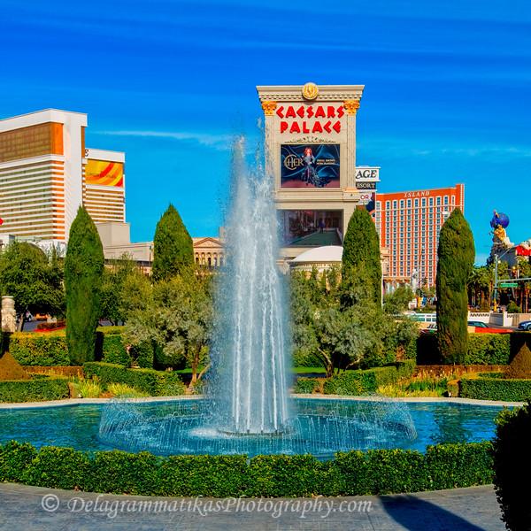 20110115_Las Vegas_0498