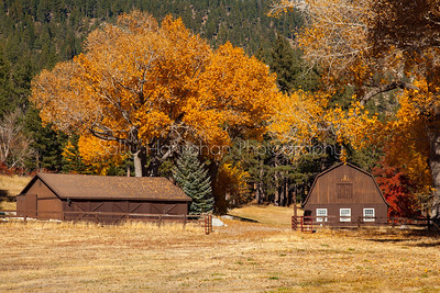 Barn ~ Franktown Rd #2 ~  Washoe Valley Nevada