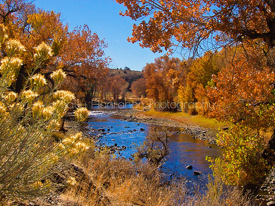 Autumn on the Carson River