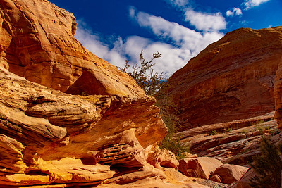 Eroded Sandstone Buttes Along the White Dome Trail in the Valley of Fire Nevada State Park