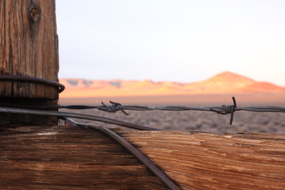desert fence and cinder cones