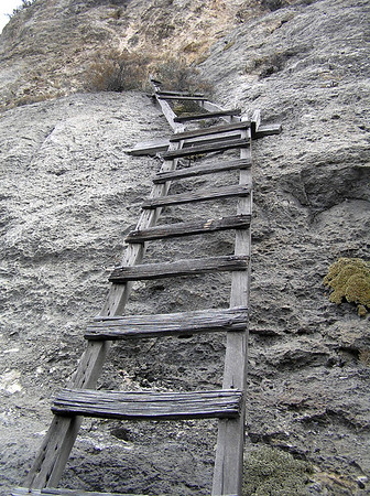 historic ladder