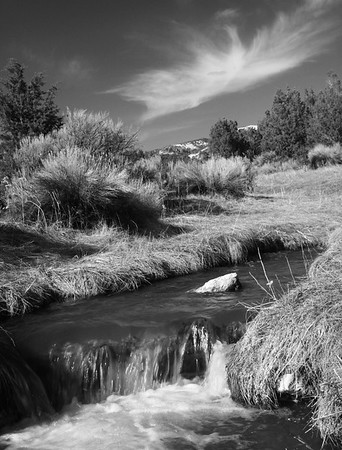 Steptoe Creek