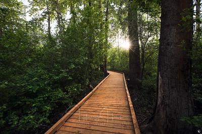 Blackwell Trail 2