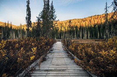 Huff Lake Boardwalk