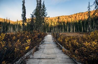 Huff Lake Boardwalk