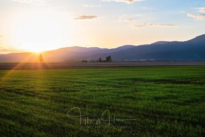 Rathdrum Prairie Sunset