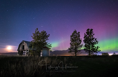 Northern Lights on the Prairie