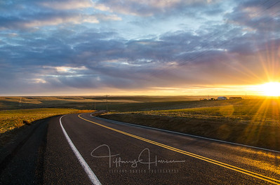 Sunset Over a Palouse Road