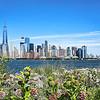 NY Skyline -Lower Manhattan