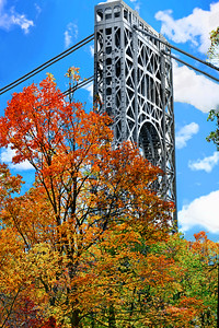 GW Bridge and Autumn Trees