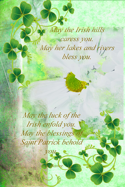 Irish Blessing Daisy and Shamrock Greeting