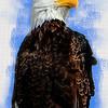 Bald Eagle Textured Portrait