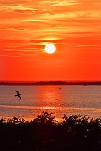 Tangerine Sundown Skies N.J>