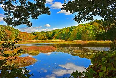 Autumn in the Allamuchy Mountains N.J.