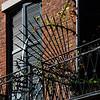 Building Detail; French Quarter; NOLA