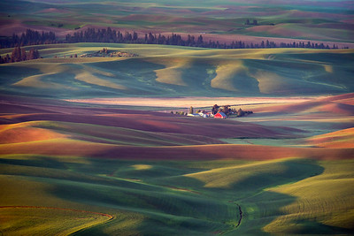 Palouse Farm in Earth Tones