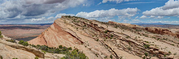 Top of Comb Ridge