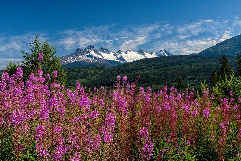 The Seven Sisters Mountain Range