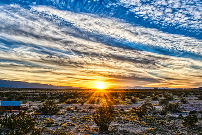 Mohave Sunrise