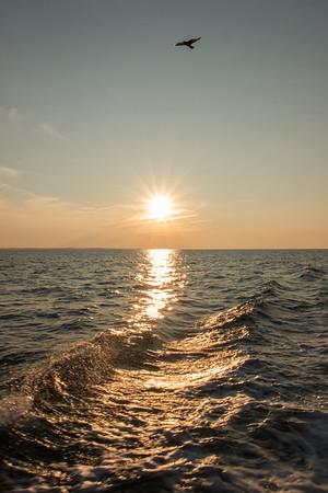 Sunset over Atlantic Ocean, PEI.