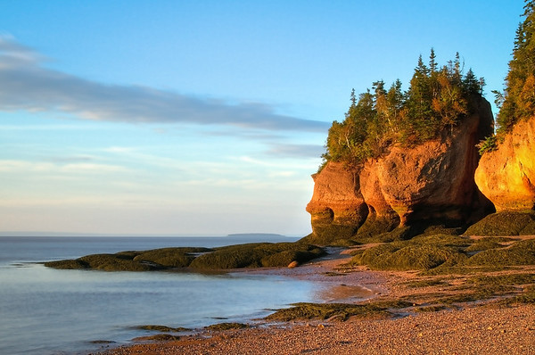 Hopewell Rocks Shoreline