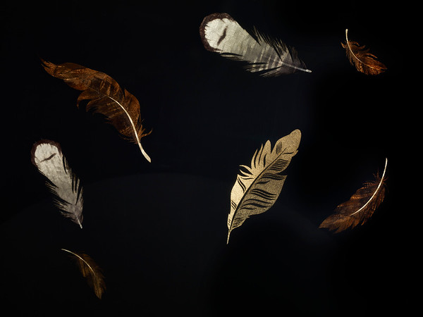 Floating Feathers