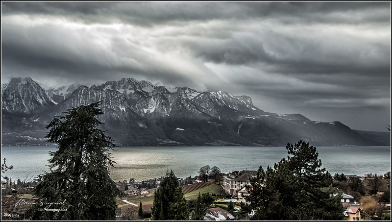 Leman lake  -  Swiss