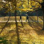 Parc de La Rochelle