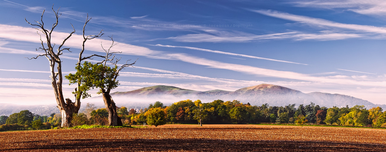 Malvern Hills from Madresfield Estate