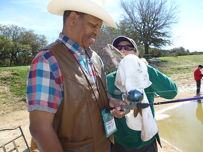 Texas Dude Ranch #1813 (Feb 26-Mar 3)