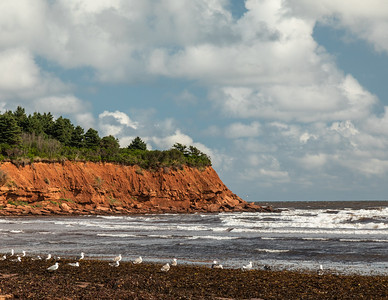 Cape Turner and the Gulf of St. Lawrence.  Prince Edward Island National Park, PEI,  Canada.