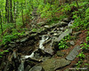 On the Horns Pond Trail there was a section with some great stone work to divert and cross a few small brooks